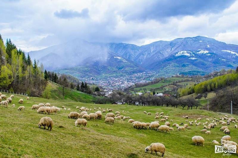 Photo of NOVE BALKANSKE PRIČE: Rumunjska je jadna i tamo se nema ništa za vidjeti