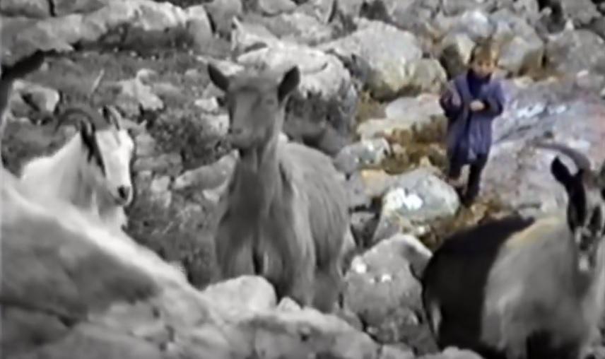 Photo of VIDEO Pogledajte rijetku snimku malenog Luke Modrića koji čuva koze na Velebitu!