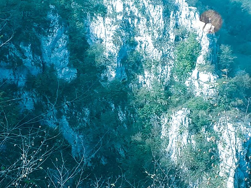 Photo of FOTO Do kad će turisti na Plitvicama riskirati život zbog jedne fotografije?