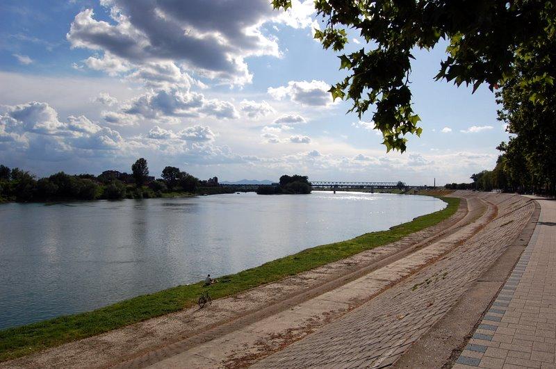 Photo of Mreža parkova uz rijeku Savu traži rješenje protiv invazivnih biljnih vrsta