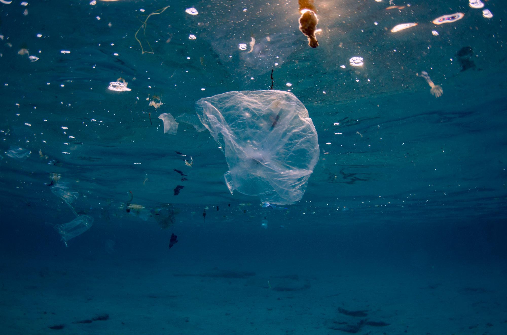 Photo of Ogromnim kitovima ponovo upozoravaju na plastičan otpad u moru