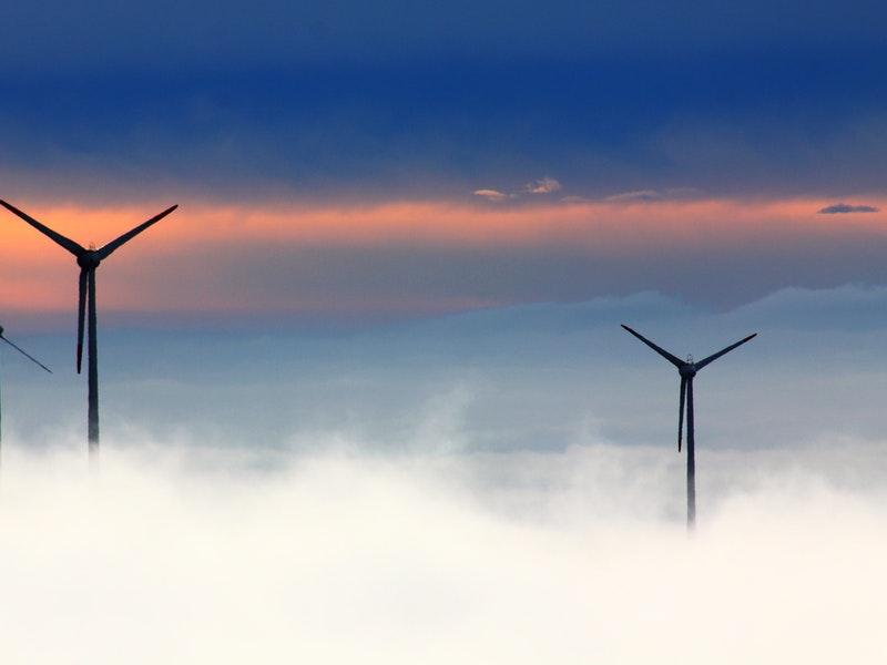 Photo of Vjetroelektrane ipak pridonose klimatskim promjenama