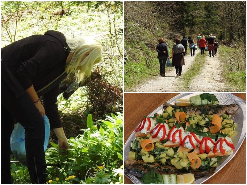 """Photo of U KORENICI """"Dan medvjeđeg luka"""" vraća iz zaborava ovu ljekovitu i ukusnu biljku"""