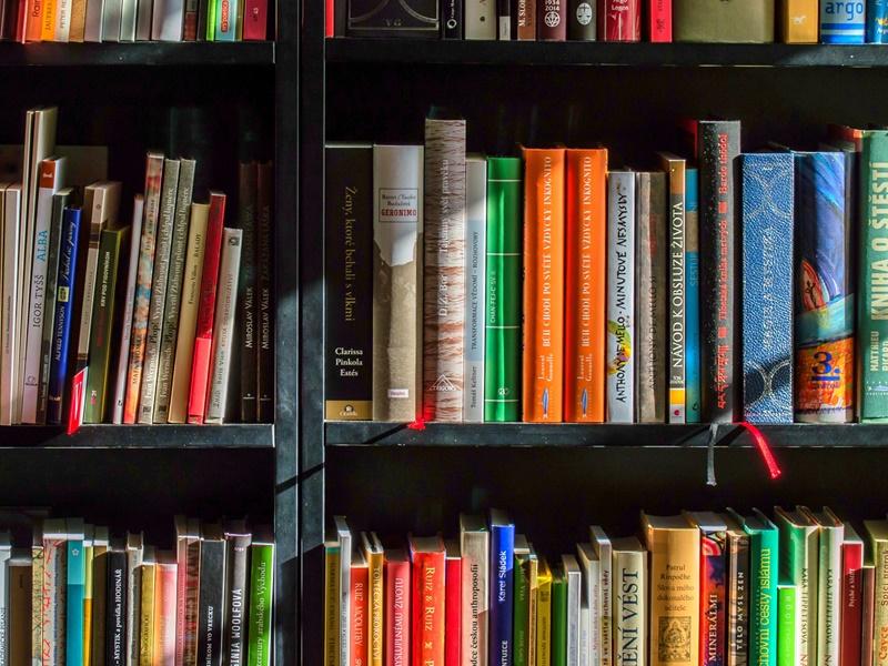Photo of PREPORUČENA LEKTIRA Koje bi knjige trebali čitati učenici prema prijedlogu nastavnika?