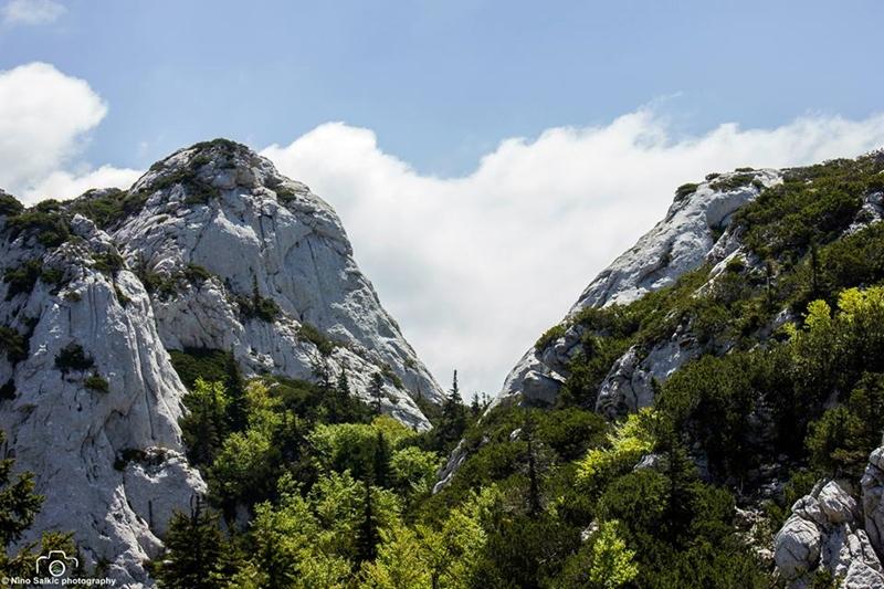 Photo of TJEDAN SJEVERNOG VELEBITA Mjesto gdje su hajduci, gorske vile i jedna neobična životinjica pronašli svoj dom