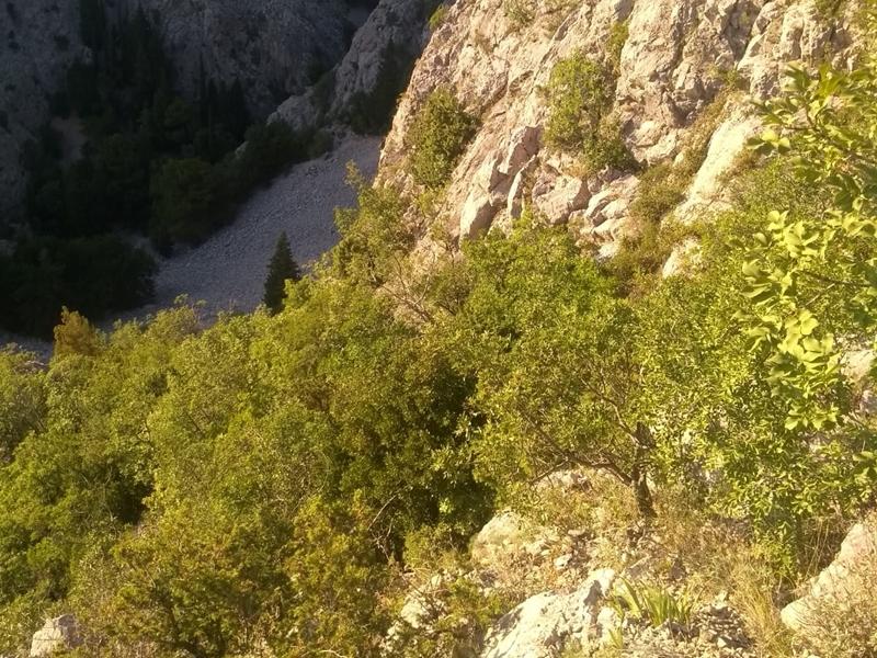 Photo of Gospićki HGSS spasio dvoje turista sa stijena iznad uvale Zavratnica
