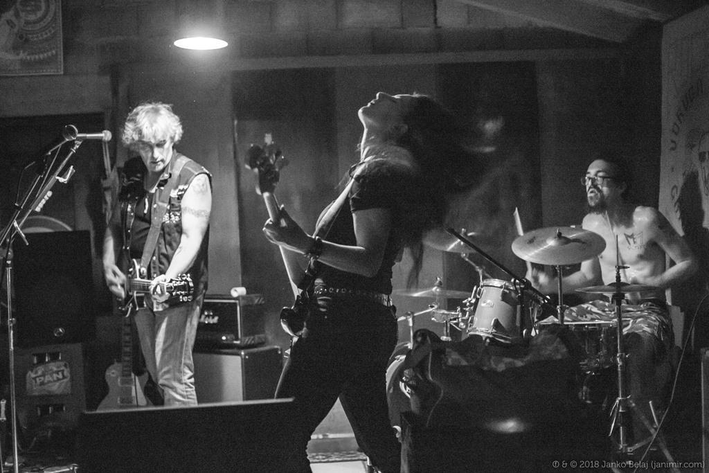 Photo of Rockin' in the Fields: Jeste li spremni za kvalitetan blues & rock festival u Novaljskom polju?