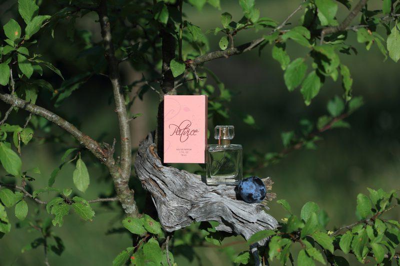 Photo of USKORO SADNJA ŠLJIVA Gotova kampanja parfema Plitvice, HVALA SVIMA!