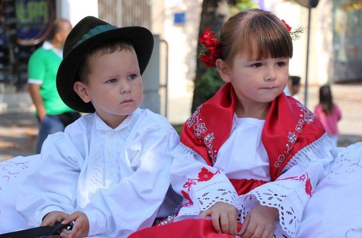 Photo of Svečanim otvaranjem danas počinje raskošan središnji dio Vinkovačkih jeseni