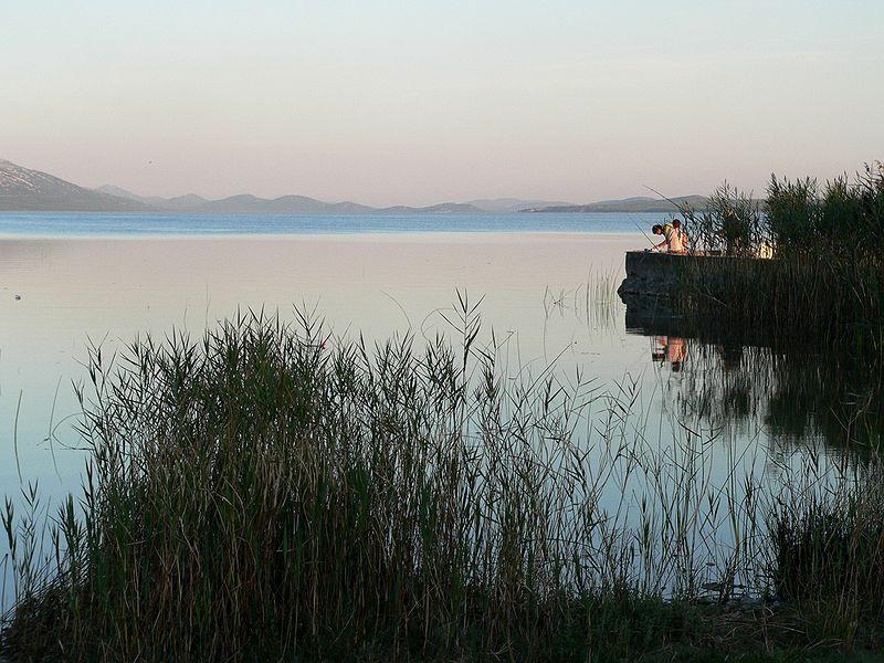 Photo of Park prirode Vransko jezero danas slavi 20. rođendan!