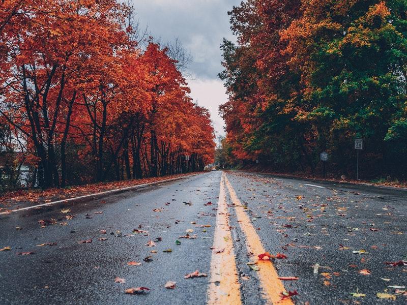 """Photo of Vozači oprez! Vlažno lišće stvara """"jesensku poledicu"""""""