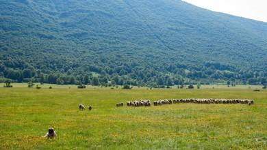 """Photo of VLADA """"IZNAJMILA"""" LIKU Naftna industrija prijeti ličkoj poljoprivredi i turizmu"""