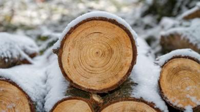 Photo of Više od 300.000 Hrvata zimi si ne može priuštiti pošteno grijanje