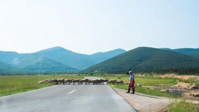 Photo of U ponedjeljak počinje isplata prve rate potpora poljoprivrednicima