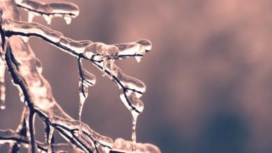 Photo of Vremenska prognoza: Nakon južine stiže pogoršanje vremena