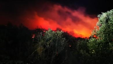Photo of Vatrogasci zabilježili 250 intervencija u posljednja 24 sata