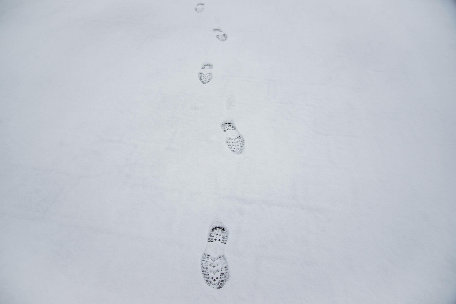 likaclub_snijeg u ožujku 2020 (25)