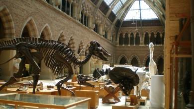 Photo of IZ UDOBNOSTI DOMA Krenite u virtualnu šetnju najpoznatijim svjetskim muzejima!