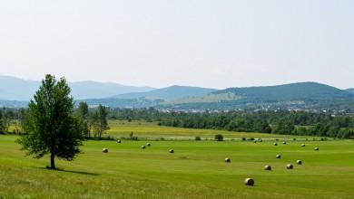 Photo of OIKON: U Ličko-senjskoj neiskorišteno 36.035 hektara poljoprivrednog zemljišta