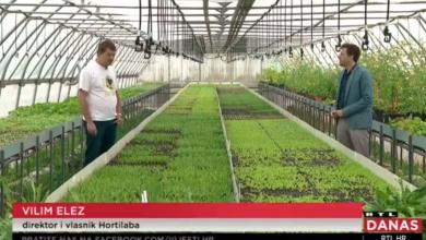 """Photo of VIDEO Domaće se traži više nego ikad, ali toliko je toga krivog: """"Uvozimo jabuku, mrkvu, luk. Dokle?"""""""