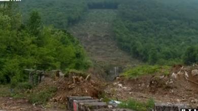 Photo of VIDEO Hrvatske šume krče šumu na granici s BiH zbog migranata