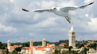Photo of Hrvatska i otok Rab na popisu TOP 8 destinacija svijeta