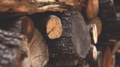 Photo of 40-godišnjak iz Otočca posjekao i ukrao 75 metara drva