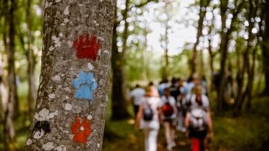 Photo of FOTO U blizini Plitvica otvorene staze koje prate korake Vuka, Risa i Medvjeda!