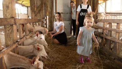 Photo of Lijepa priča iz Podravine: Kozje mlijeko – sinonim za ljepotu i higijenu!