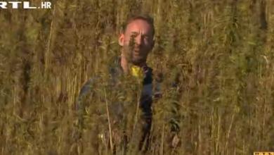 """Photo of VIDEO RTL u žetvi industrijske konoplje: """"Proizvoda ima živo čudo, sto posto biljke je iskoristivo"""""""