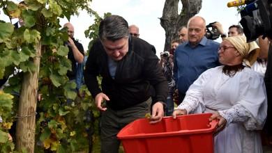 """Photo of Predsjednik Milanović s diplomatima u """"Diplomatskoj berbi"""" na Plešivičkom gorju"""