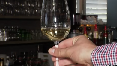 Photo of VIDEO Epidemiolozi predlažu zabranu točenja alkohola tijekom zime, ugostitelji kažu – to je put u ilegalu