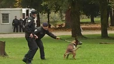 Photo of VIDEO Kako izgleda život policajaca: Imaju neprimjerenu plaću, rade i danju i noću i to bez adekvatne opreme