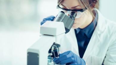 """Photo of PRESTIŽNE STIPENDIJE Otvoren natječaj """"Za žene u znanosti"""""""