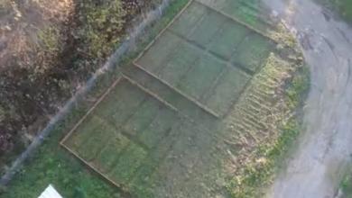 """Photo of VIDEO  Zakupite vrt, odaberete sadnice, a ostalo prepustite – gruntovčanima: Nova aplikacija omogućava svima da se """"bace"""" u poljopivredu"""