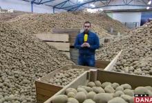"""Photo of VIDEO Zbog koronavirusa čak 40 tisuća tona krumpira stoji u skladištima: """"Nagovještalo je na dobro, a na kraju…"""""""