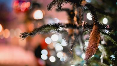Photo of Odgađa se Božićna čarolija u Gackoj