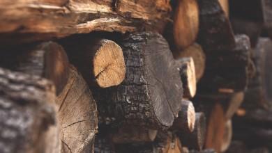 Photo of U Lici se kradu drva, motorne pile, traktorske grablje, satovi, nakit…