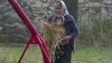 """Photo of VIDEO Starica otišla čuvati ovce, lopovi joj ukrali 400 litara vina: """"Tuđe ukrasti, nije dobro. I to jadnom starom čeljadetu"""""""