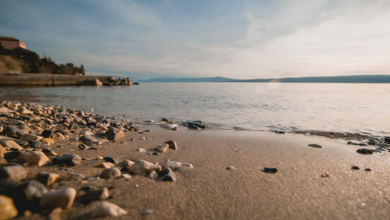 Photo of Hrvatska u Švedskoj među najtraženijim turističkim destinacijama za 2021.