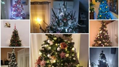 Photo of S LIČKOG VIBERA Pogledajte kako izgledaju božićna drvca naših čitatelja!