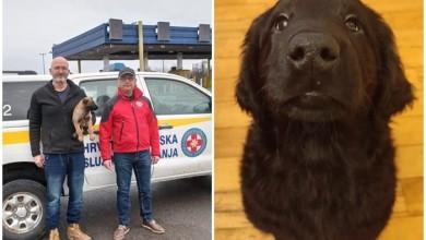 Photo of Stiglo pojačanje! HGSS-u donirana dva šteneta za odjel koji obučava potražne pse