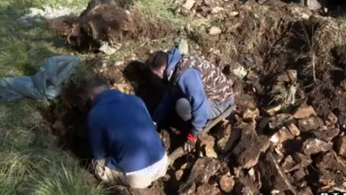 Photo of VIDEO U Zadru se iskapaju posmrtni ostaci 123 njemačka zarobljenika iz Drugog svjetskog rata