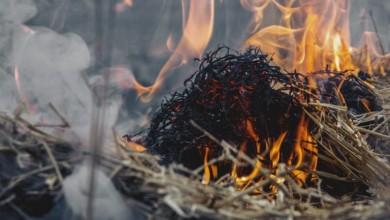 Photo of Karlovac: 81-godišnjakinja smrtno stradala prilikom spaljivanja korova