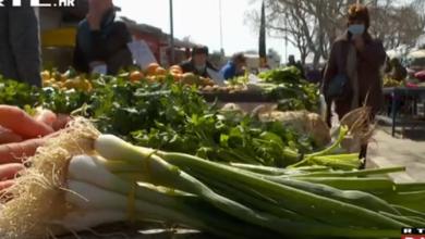 Photo of VIDEO Neizostavni su jaja, pečeno meso, kuhana šunka, kolači: Koliko ćemo potrošiti za Uskrs?