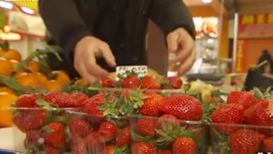 Photo of VIDEO Već nas mame prve ovosezonske jagode! Evo kako prepoznati koje su svježe i domaće