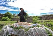 Photo of Trnoružica je živa i pronađena je u Hrvatskoj! Evo kako izgleda i koga ljubi