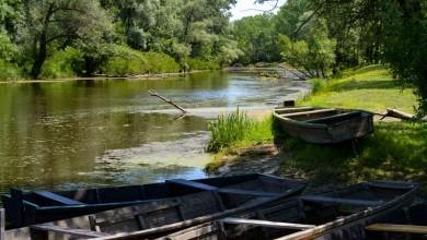 Photo of Park prirode Lonjsko polje – prvi park prirode u Hrvatskoj koji je uveo plaćanje kriptovalutama