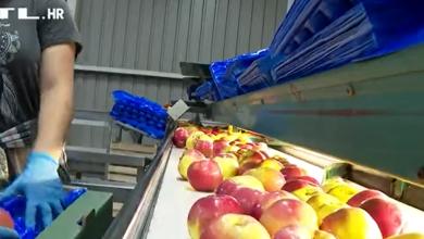 Photo of VIDEO  Klimatske promjene udarile i na kruške i jabuke: Urodi su sve slabiji pa domaće plaćamo više!