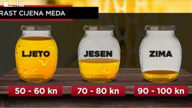 Photo of VIDEO  Cijena raste iz godine u godinu: Med je već sada 20 posto skuplji nego lani